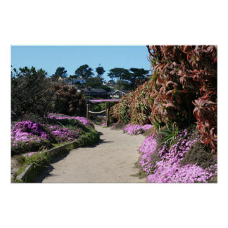 Monterey Beach trail, Spring Photo Poster
