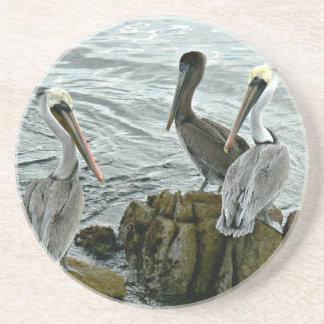 Monterey Pelicans Coaster