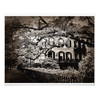 Monterrey Square In Black And White Photographic Print