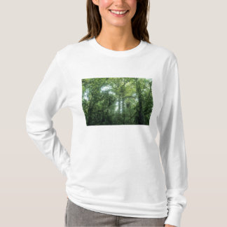 Monteverde Cloud Forest, Costa Rica. T-Shirt