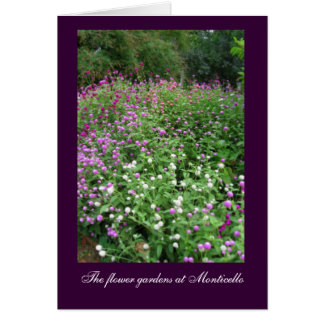 Monticello Flower Gardens Card