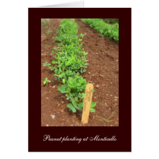 Monticello's Vegetable Gardens Card