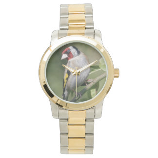 Montre de Goldie