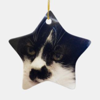 Monty Cat Ceramic Star Ornament