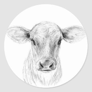Moo A Young Jersey Cow Classic Round Sticker