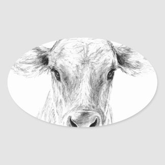 Moo A Young Jersey Cow Oval Sticker