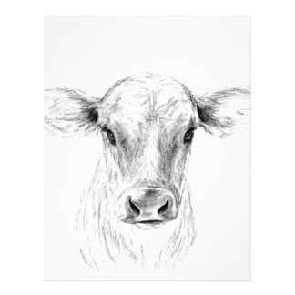 Moo A Young Jersey Cow Personalized Letterhead