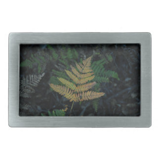 Moody Fern in the Santa Cruz Forest Rectangular Belt Buckle