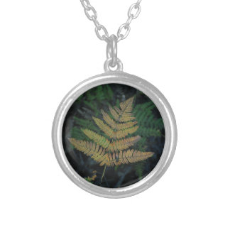 Moody Fern in the Santa Cruz Forest Silver Plated Necklace