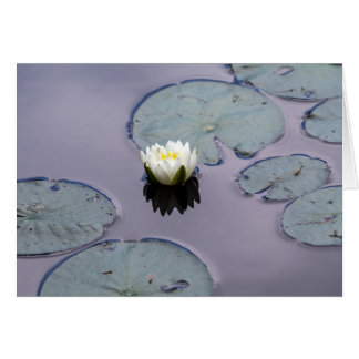 Moody Water Lily Card