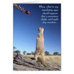 Moomins with Santa - Seasons greetings 1 Greeting Card