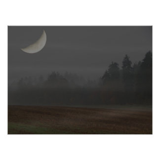 moon at the night poster