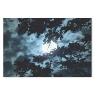 Moon Illuminates the Night behind Tree Branches Tissue Paper