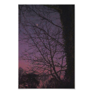 Moon in the early morning photo print