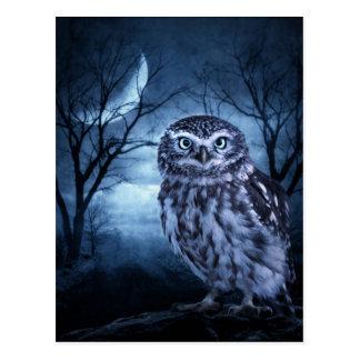 """Moon Owl"" Postcard"