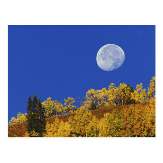 Moon setting at sunrise, Gunnison National Postcard