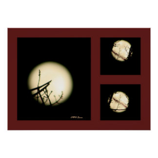 Moon Shadow Print