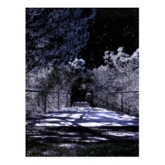 Moon Shadows Postcard