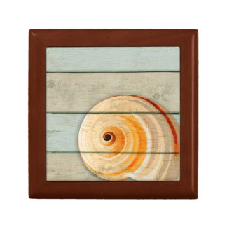 Moon Snail Gift Box