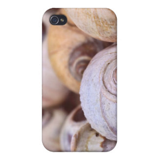 Moon Snail Shells Cases For iPhone 4