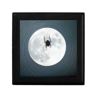 Moon spider gift box
