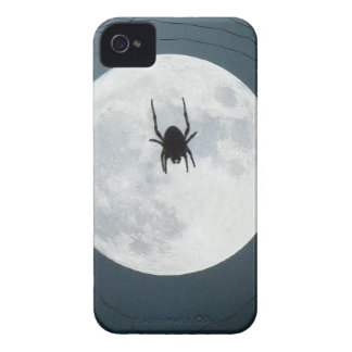 Moon spider iPhone 4 cases