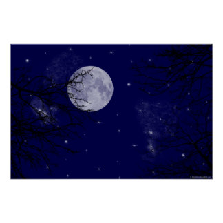 Moon View Poster