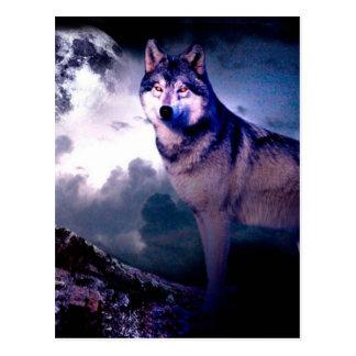 Moon wolf - gray wolf - wild wolf - snow wolf postcard