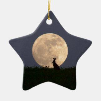 Moongazer.JPG Ceramic Ornament