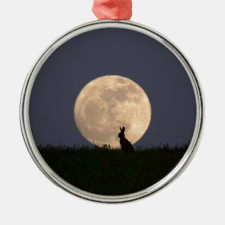 Moongazer.JPG Silver-Colored Round Ornament