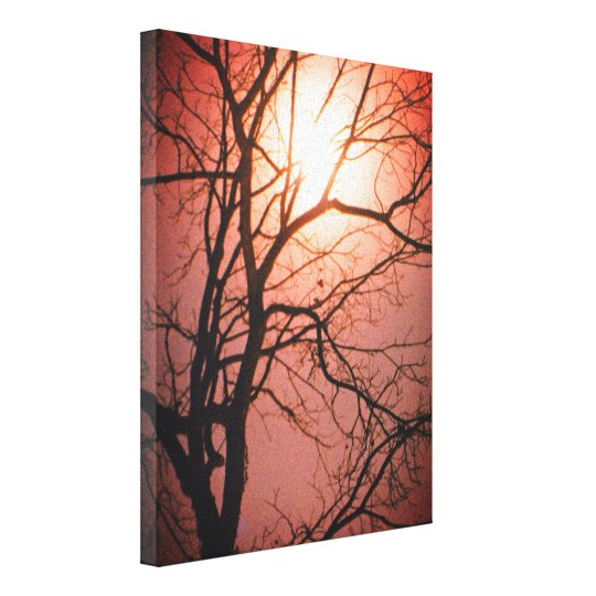 Moonlight Canvas Print