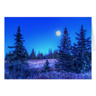 Moonlight Christmas Card