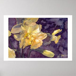 Moonlight Daffodils- Watercolor Poster Print