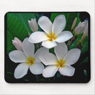 Moonlight Plumeria Mousepad