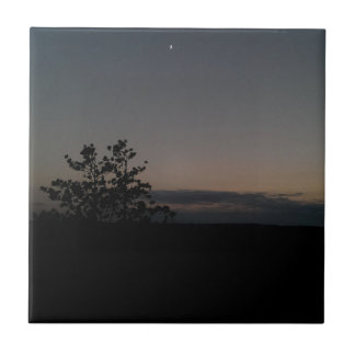 Moonlight Tiles