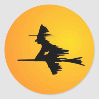 Moonlit Witch Classic Round Sticker