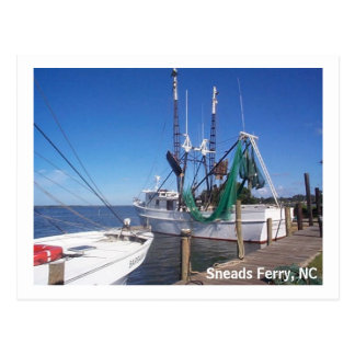 Moored Shrimp Boats Postcard