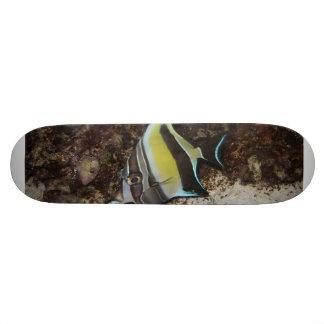 Moorish Idol Skate Board Decks