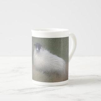 Moorland sheep photography tea cup
