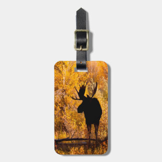 Moose (Alces Alces) Bull In Golden Willows 2 Luggage Tag