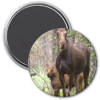 Moose Animal Forest Peace Love Destiny Fridge Magnets