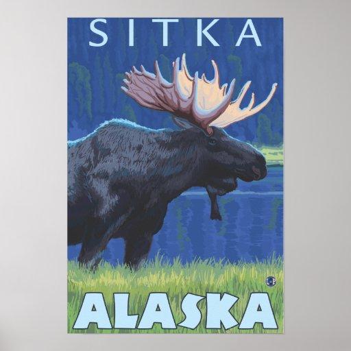 Moose at Night - Sitka, Alaska Print