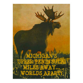 MOOSE AT SUNSET ~ UPPER PENINSULA TRAVEL POSTCARD