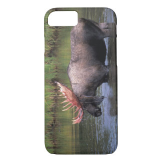 moose, bull in a kettle pond and feeds on iPhone 7 case