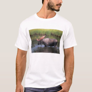 moose, bull in a kettle pond and feeds on T-Shirt