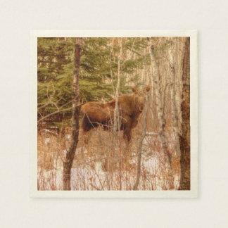 Moose Calf Disposable Napkins
