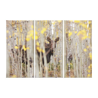 Moose Family in the Aspens Canvas Art