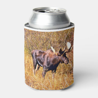 Moose in the autumnal sump can cooler