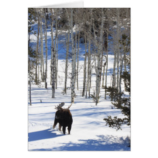 Moose in Winter All Occasion Greeting Card