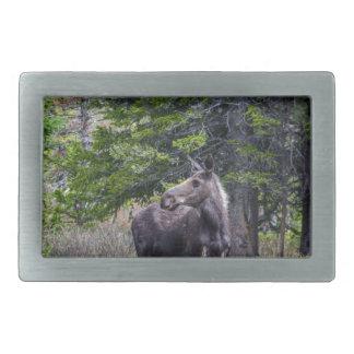 Moose Mother Belt Buckle